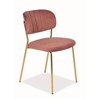 Signal Jedálenská stolička Carlo Velvet