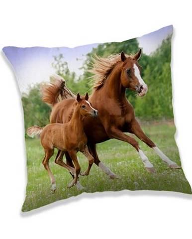 Jerry Fabrics Vankúšik Horse brown, 40 x 40 cm