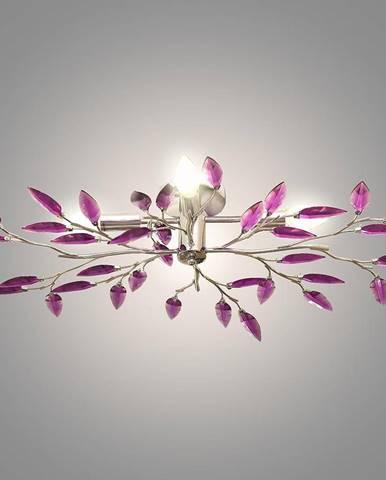 Lampa Violet P749A-4 PL4