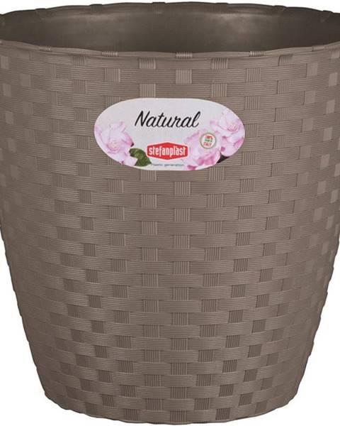 MERKURY MARKET Kvetináč Natural 14cm/Še