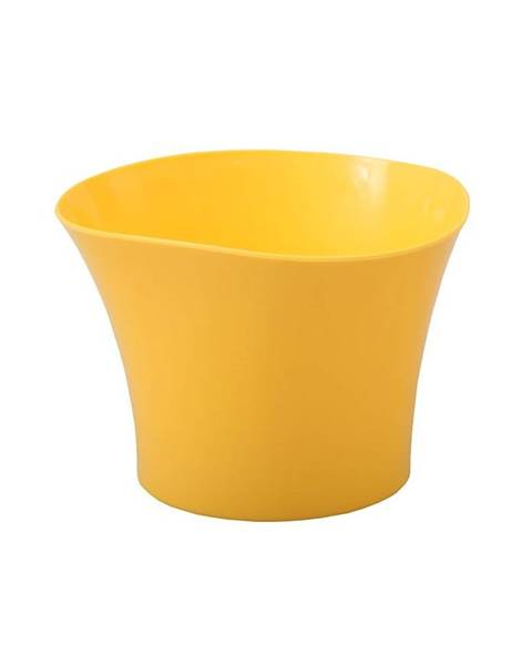 MERKURY MARKET Obal Primule 12 cm/žltý
