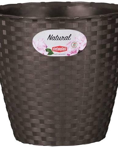 Kvetinac Natural 29cm/Hn