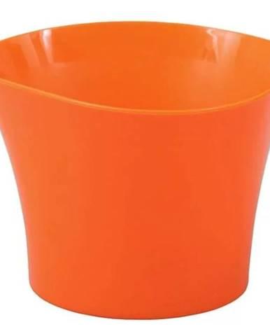 Obal Primule 12 cm/oranžový
