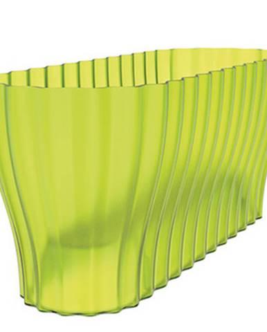 Truhlík Triola priesvitná zelená, Plastia