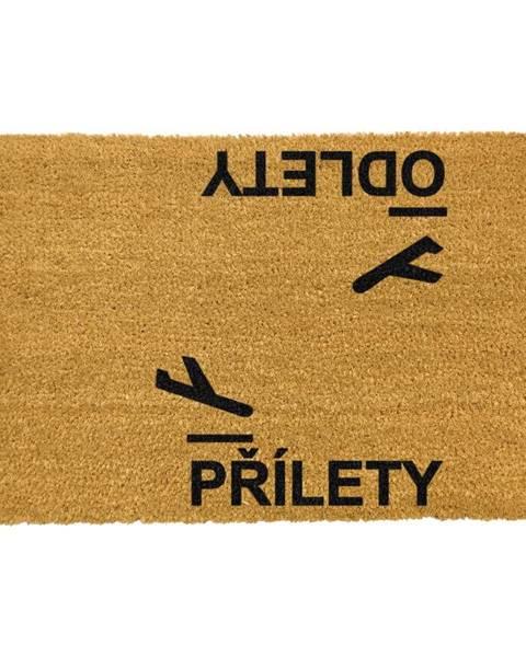 Artsy Doormats Rohožka z prírodného kokosového vlákna Artsy Doormats Přílety, 40 x 60 cm