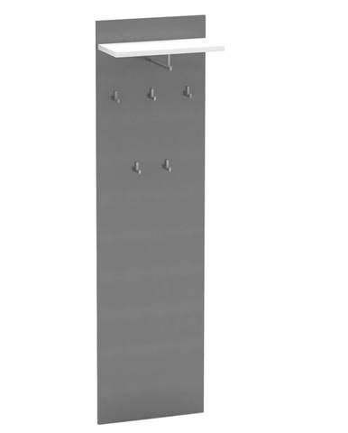 Vešiakový panel grafit/biela RIOMA NEW TYP 19