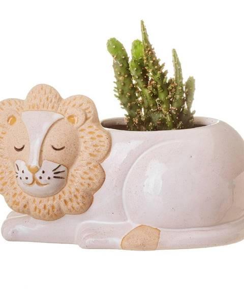 Sass & Belle Bielo-béžový kvetináč Sass & Belle Leo Lion, ø 7 cm