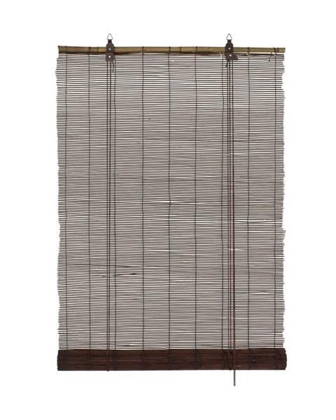 Gardinia Gardinia Roleta bambusová čokoládová, 140 x 160 cm