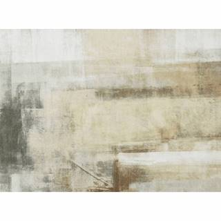 Koberec hnedá/sivá 160x230 ESMARINA TYP 1