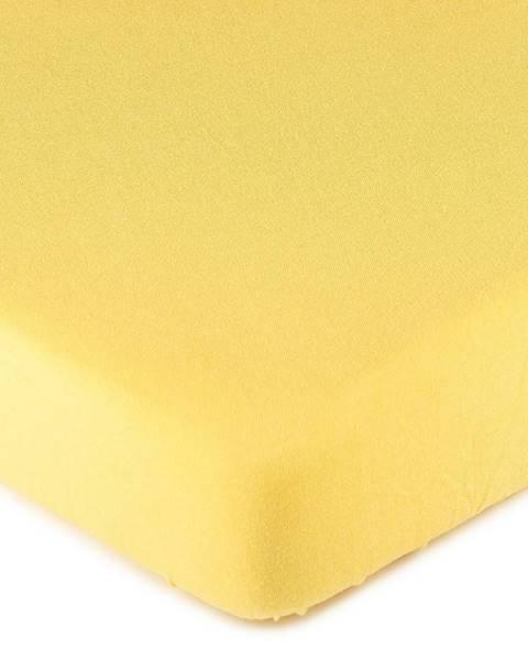 4Home 4Home jersey prestieradlo žltá, 160 x 200 cm