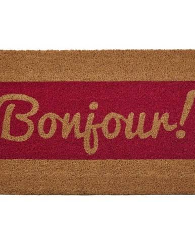 Rohožka z prírodného kokosového vlákna Premier Housewares Bonjour, 40 x 60 cm