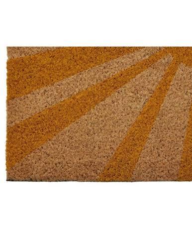 Rohožka z prírodného kokosového vlákna Premier Housewares Hi, 40 x 60 cm