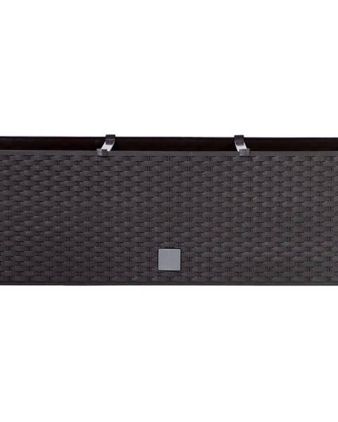 Altom Prosperplast Truhlík RATO CASE hnědý 51,4x19x18,6cm
