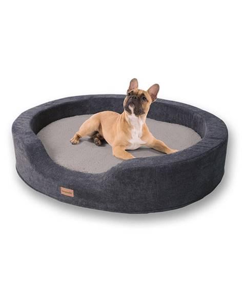 Brunolie Brunolie Lotte, pelech pre psy, vankúš pre psy, prateľný, ortopedický, protišmykový, priedušná pamäťová pena, veľkosť L (100 x 20 x 80 cm)