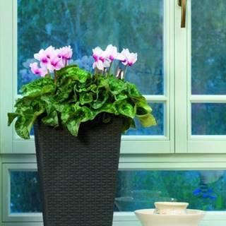 ArtRoja Rattan planter S - hnedý