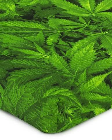4Home Prestieradlo Aromatica, 160 x 200 cm