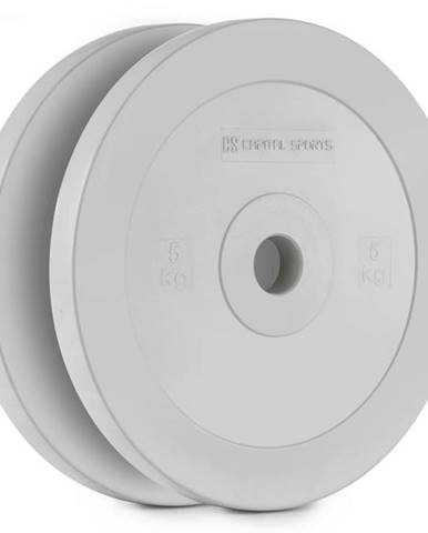 Capital Sports Methoder, šedý, technický kotúč, kotúčové závažie, guma, pár, 2,5 kg