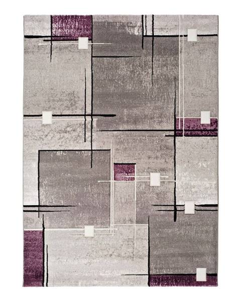 Universal Sivo-fialový koberec Universal Detroit, 140x200cm