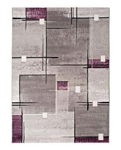 Sivo-fialový koberec Universal Detroit, 140x200cm