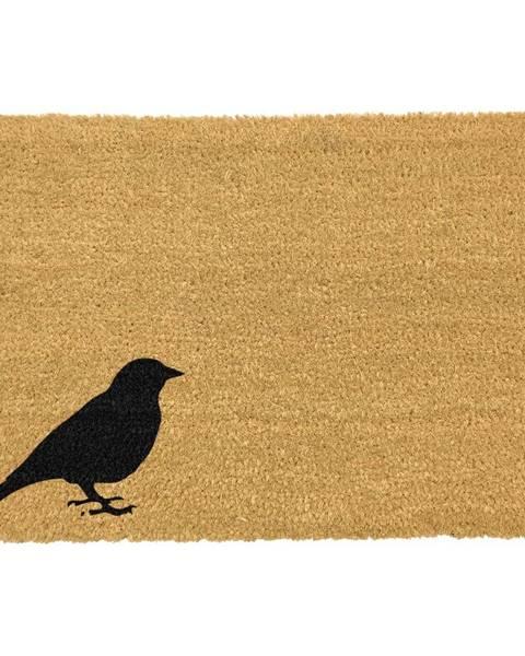 Artsy Doormats Rohožka z prírodného kokosového vlákna Artsy Doormats Bird, 40 x 60 cm