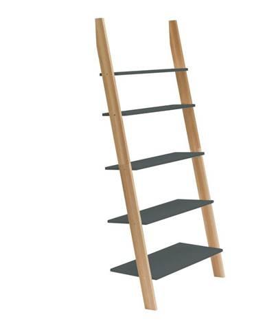 Grafitovosivá rebríková polica Ragaba ASHME, šírka85cm